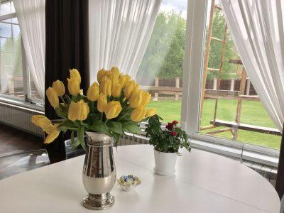 Шторы на кухню и в столовую Азбука окна